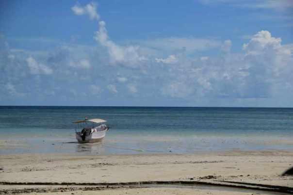 Low tide boat