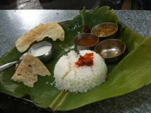 Basic thali at mango tree