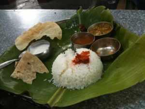 Basic thali at mango tree