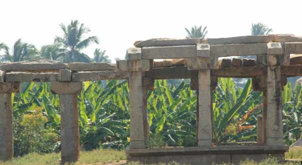 Plantations and Pillars
